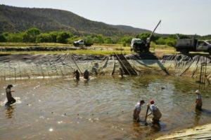 Fishing | Northern Arizona Gazette