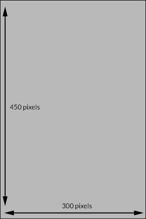Standard 300 x 300 ad spot