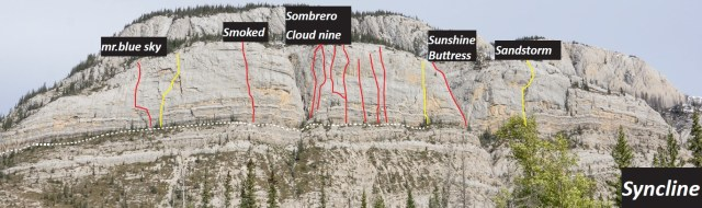 Syncline overview