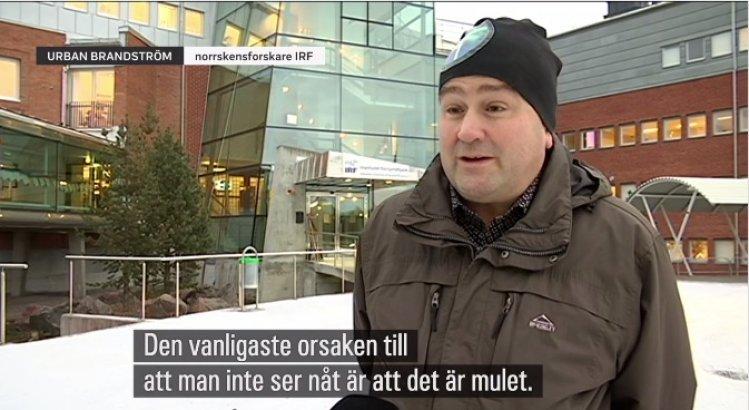 The Northern Lights researcher Urban Brändström in television feature