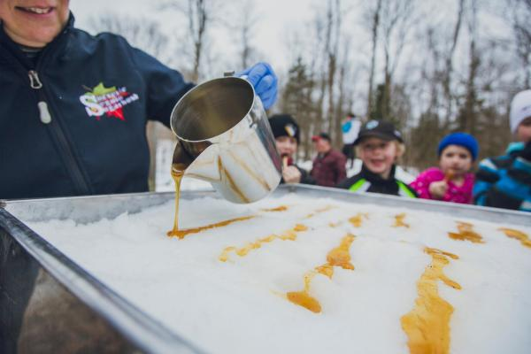 Image result for maple syrup farms travel