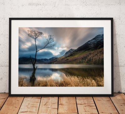 Lake District Landscape Photography, Buttermere tree, mountains, Cumbria, England. Landscape Photo. Mounted print. Wall Art.