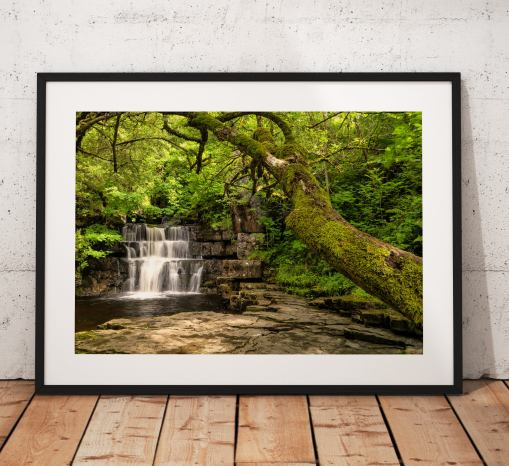 Waterfall landscape photography, Summerhill, Trees, Teesdale, Durham, Nature, England, Landscape Photo. Mounted print. Wall Art, Home Decor