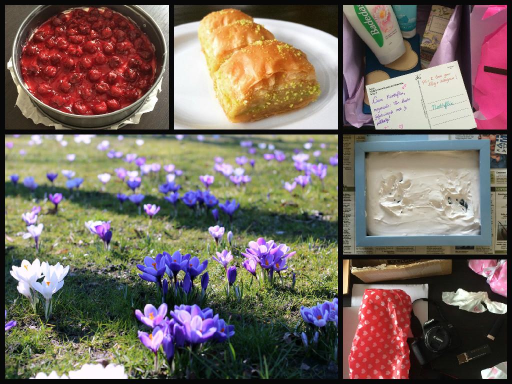 Northpics #16: (te)veel taart, WIDM?, leuke post en zon!