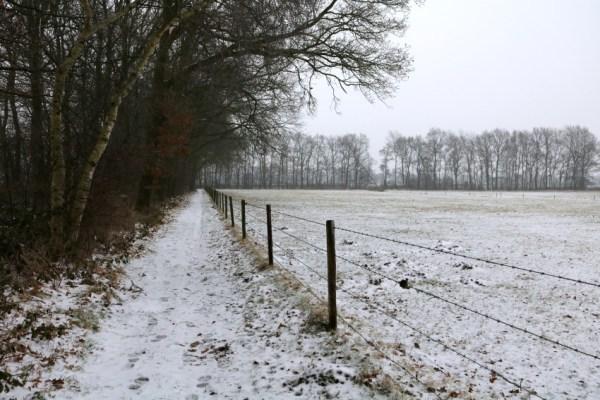 drachten-sneeuw-7-januari-2017-winter