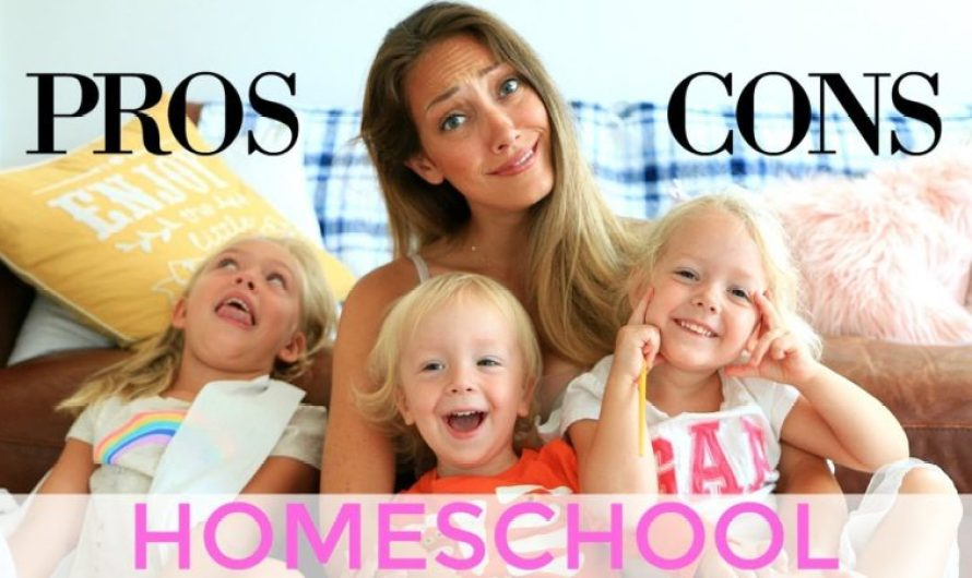 Pro and Cons Of Homeschooling – Advantages and Disadvantages Of Being Homeschooled