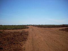 Cambodian dirt road