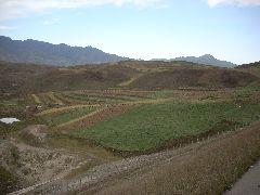 High altitude farming