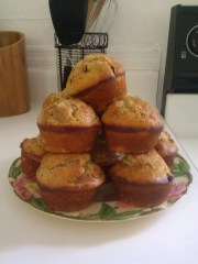 Cranberry Pecan Muffins anyone?