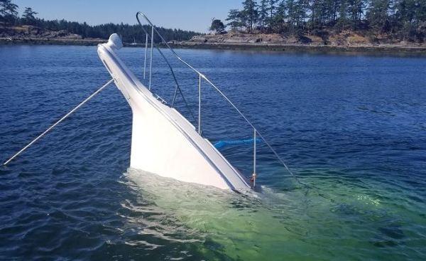 https://i2.wp.com/www.northshoredailypost.com/wp-content/uploads/2020/08/boat-sink.jpg?fit=600%2C367&ssl=1