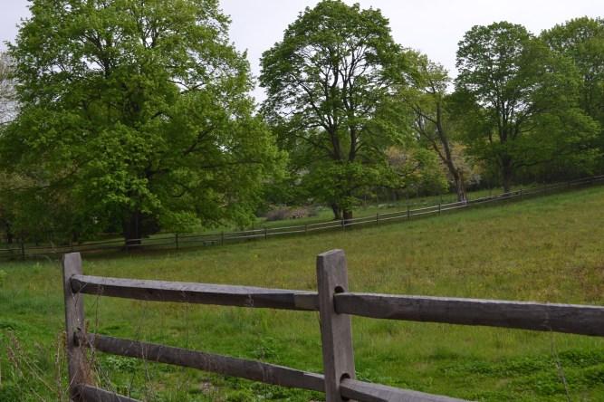 Redcote Preserve