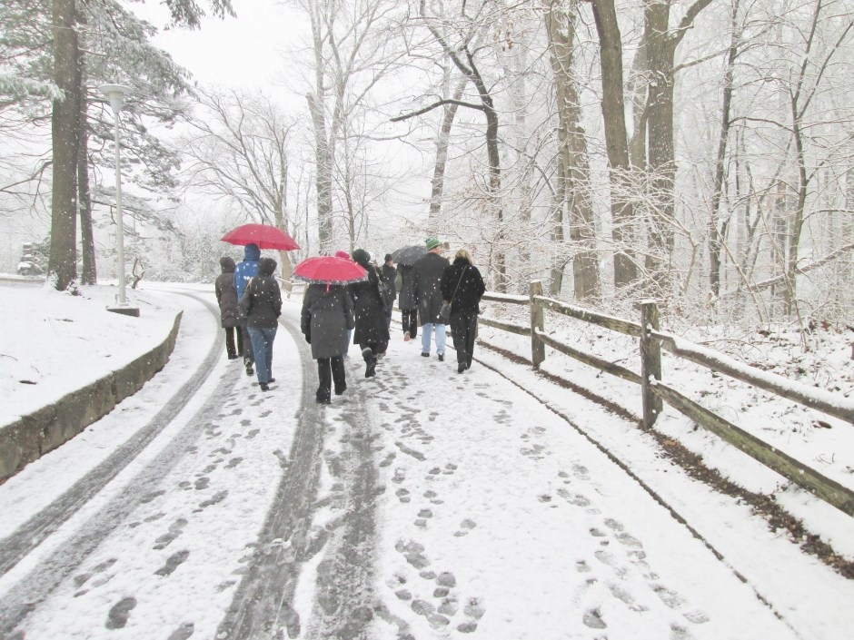 Walkers in snow