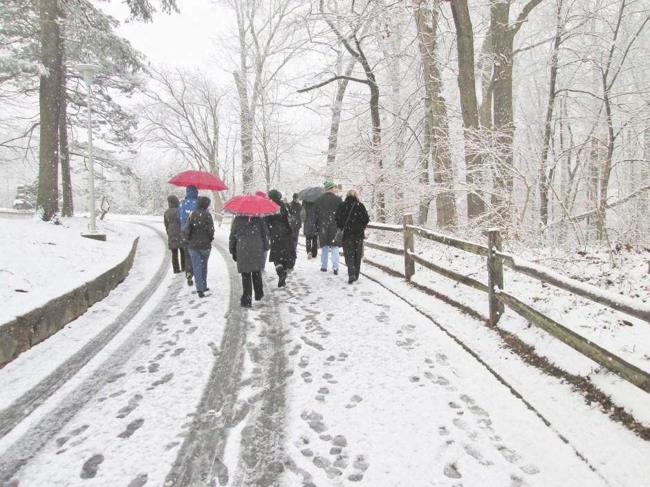 Walkers in snow