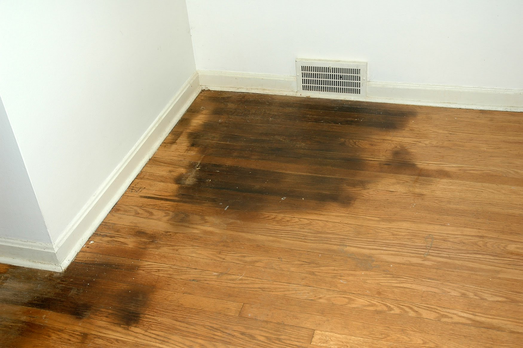 Posts How To Remove Urine From Hardwood Floors