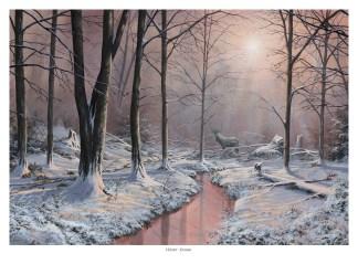 Winter Stream Snow Scene