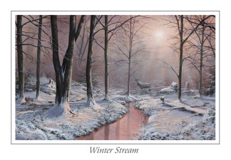 Winters Stream Greeting Card