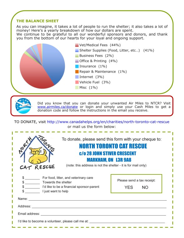NTCR newsletter winter 2015 - Page4
