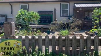 School Garden – Fall 2021 Maintenance