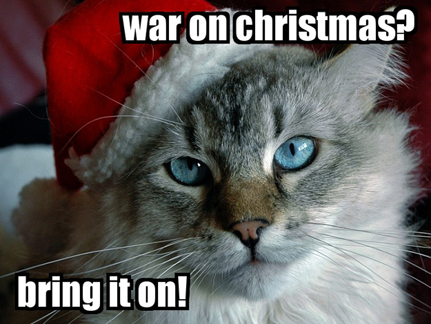 Photo: Steven Perez / Flickr I couldn't resist this picture of Santa Claws. He looks like my cat!