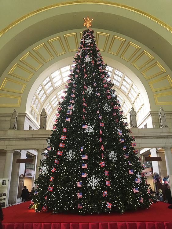 the Norwegian American Christmas tree lighting