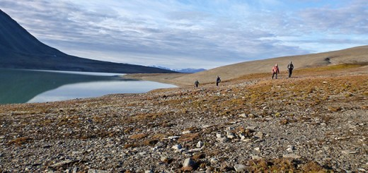 Vårfluesjøen, Svalbard