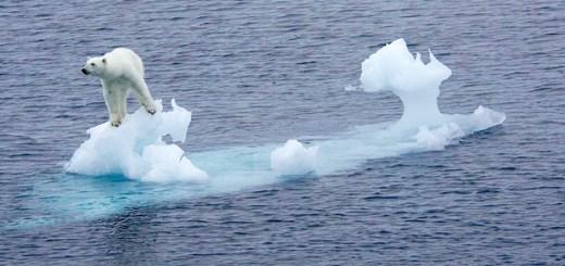 Norway warming fast