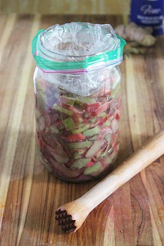 fermented rhubarb