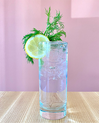 A tall clear glass of aquavit and tonic garnished with a slice of lemon and a spring of dill. The glass sits on a wooden table with a pink background.