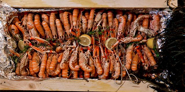 a large tray of fresh shrimp