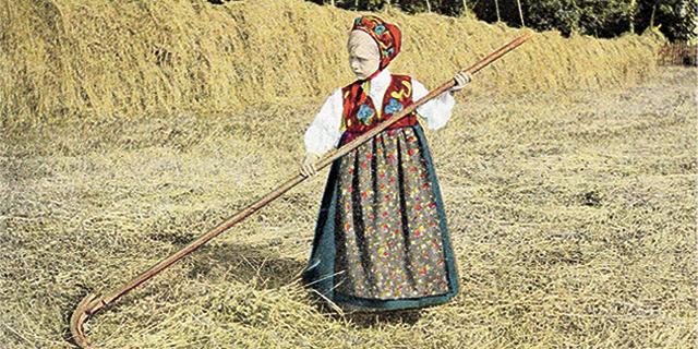 A little girl in a folk costume rakes hay
