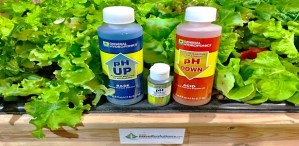 How to Adjust pH Of Hydroponic Nutrient Solution