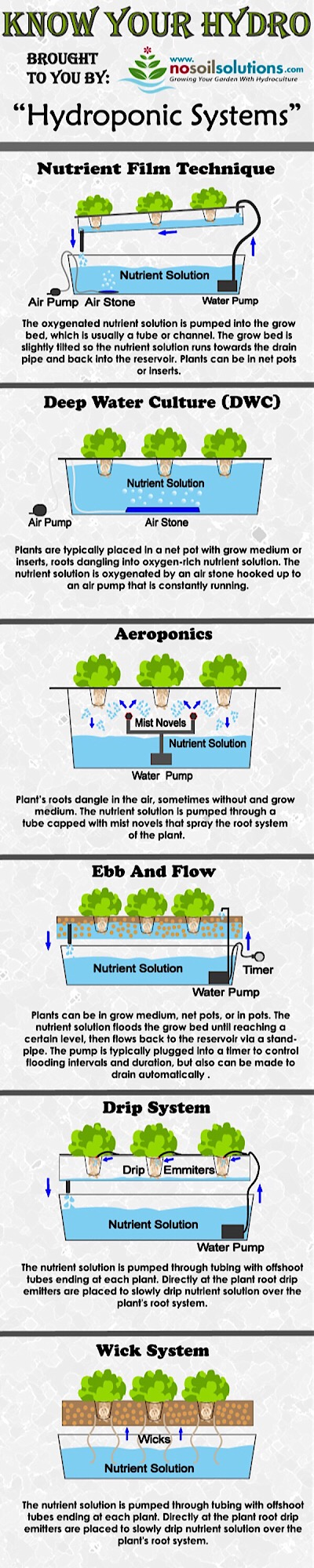 6 Different Types Of Hydroponic Systems infographic