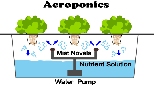 This is a diagram of an Aeroponic system