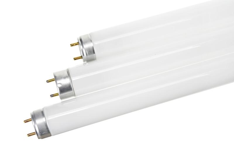 Choosing The Right Fluorescent Grow Lights For Your Indoor Garden