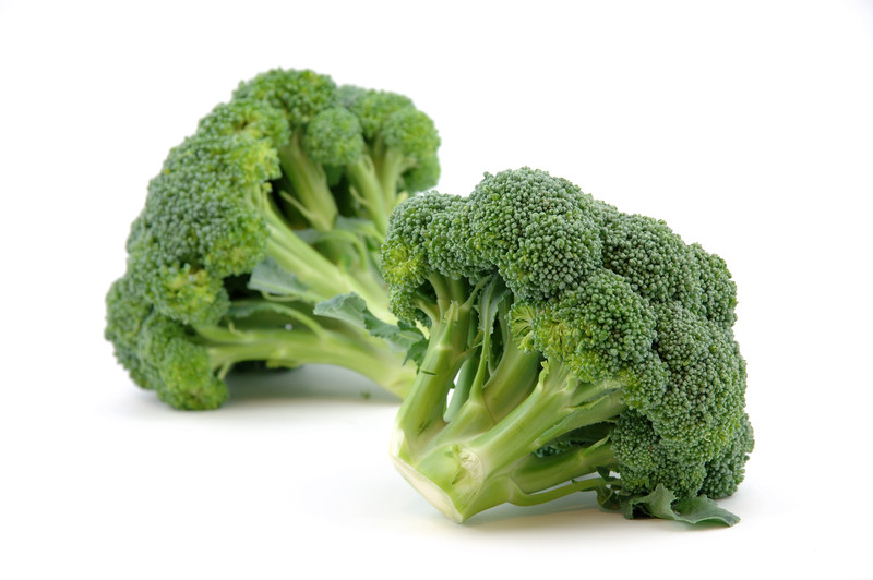 How To Grow Hydroponic Broccoli