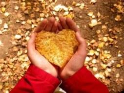 Cómo cuidar el corazón. Consejos para una buena salud cardiovascular