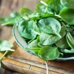 Para qué sirven las Espinacas. Beneficios para la salud