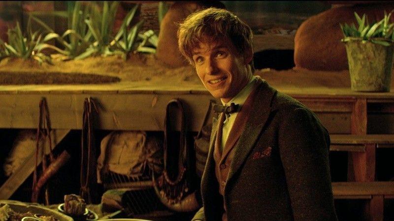 Newt Scamander apareció en la saga Harry Potter