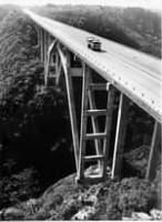 May be an image of bridge, nature and road