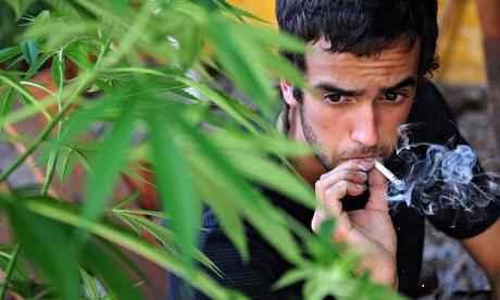 A-cannabis-smoker-in-Urug-011