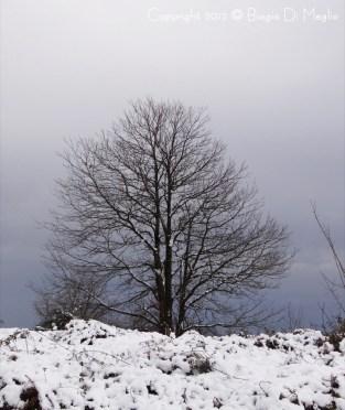 neve-ischia-napoli29.5