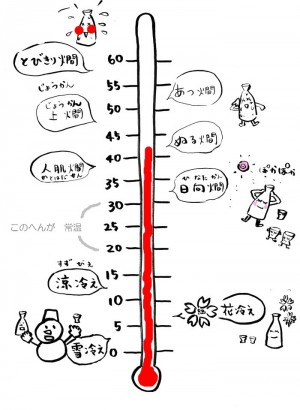 これ全部知ってたら相当な日本酒ツウ♪お燗の種類!