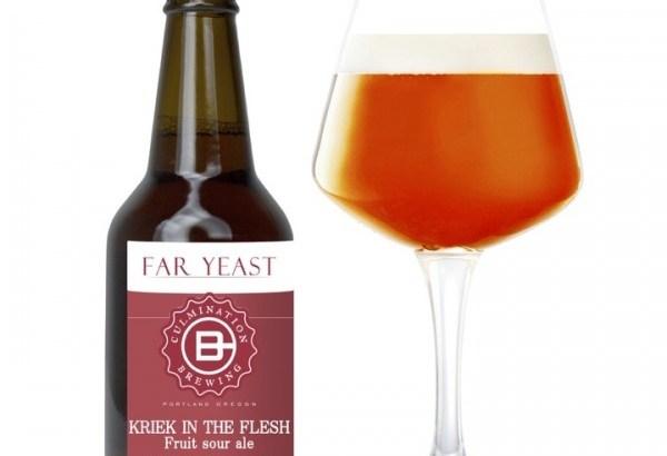 Far Yeast Kriek in the flesh