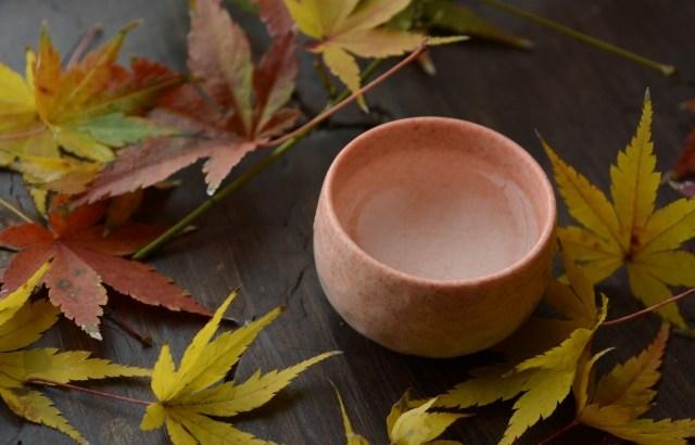 秋限定の日本酒「ひやおろし」って?ひやおろしの美味しさの秘密に迫る!