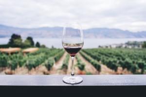 家飲みにおすすめ!コスパ高&美味しい「箱ワイン」って?