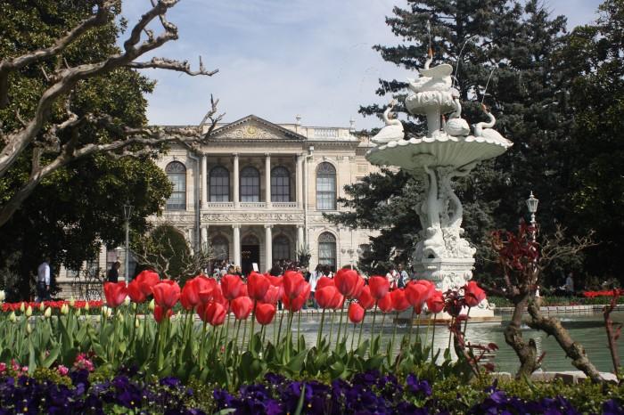 Notas desde el festival del tulipán de Estambul