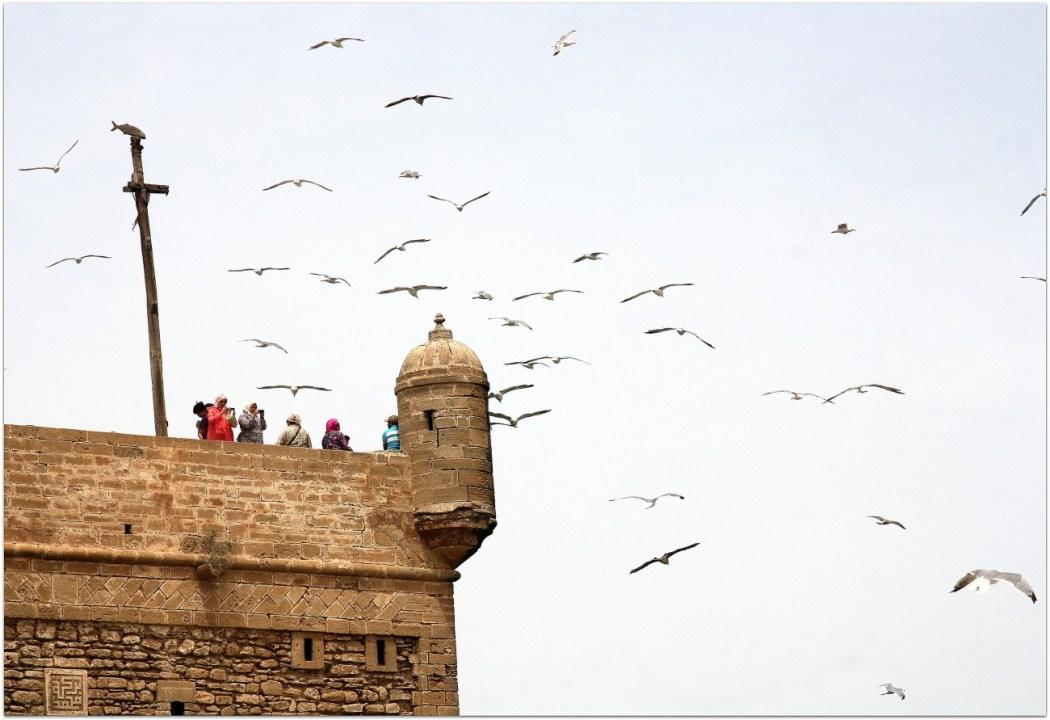 Ciudadela de Essaouira