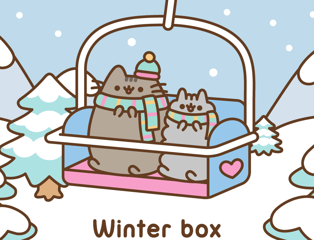 pusheen winter box
