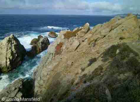 Monterey & Big Sur (1)
