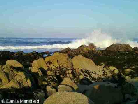 Monterey & Big Sur (15)